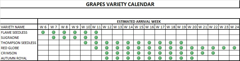 GRAPES VARIETIES